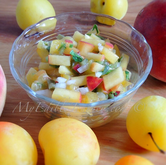 Stone Fruit Salsa | My Edible Journey